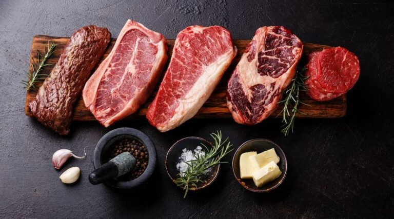 Carnivore Diet : Everything You Need to Know! Benefits, Risks