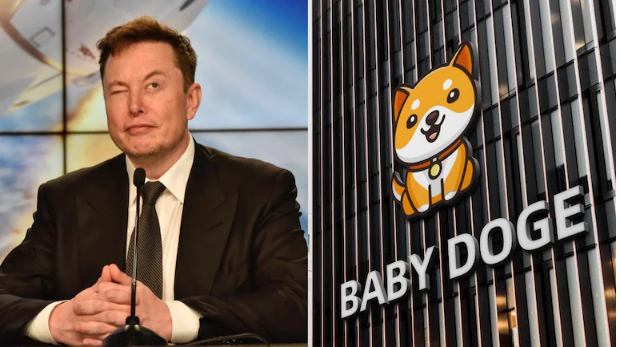 Baby Doge Coin Price :- How To Buy Babydoge Coin? Read Here!