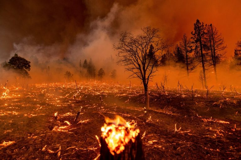Western Wildfires Pose Trouble For New York, Smoke And Soot Increase The Risk Of Air Pollution
