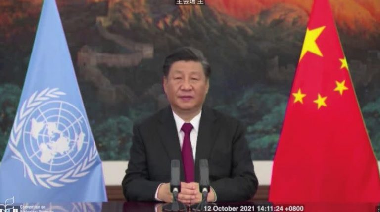Countries call for urgent action on biodiversity with 'Kunming Declaration'